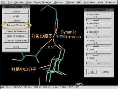 coot-DynamicDistance_desc.png