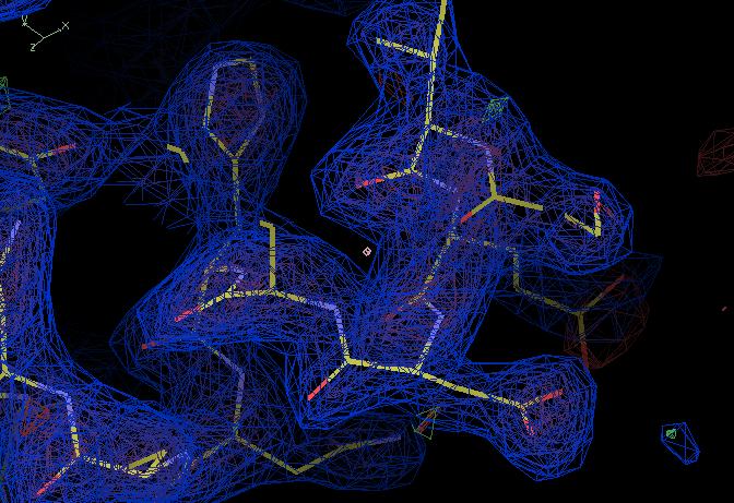 Multi-chicken(2Fo-Fc,σ=1.5)